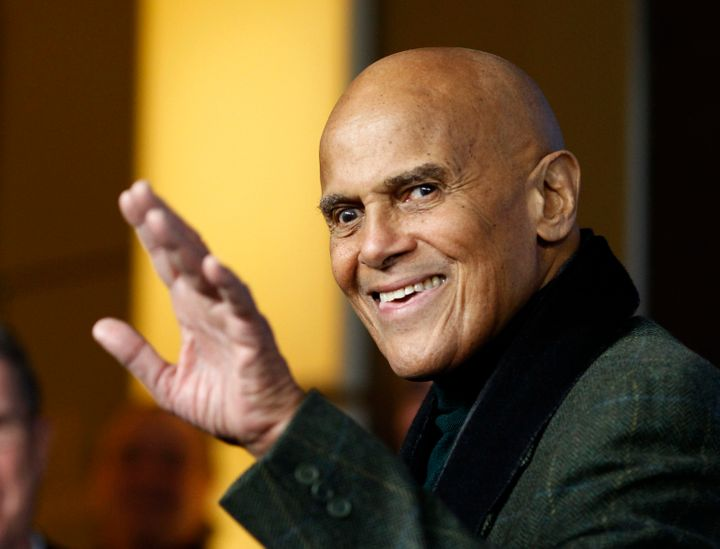 Singer, actor and activist Harry Belafonte.