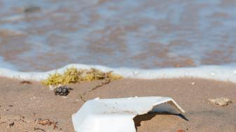 Closeup of polystyrene rubbish on sandy beach with water