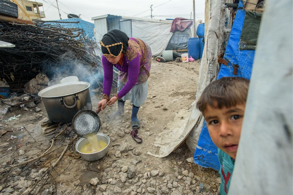 Woman cooking over an open fire, in the Bekaa Valley, Lebanon.