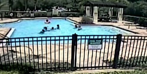 The toddler's cousin notices her and swims