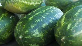 Watermelon(Citrullus lanatus) is a vine-like (scrambler and trailer)flowering plantoriginally from southernAfrica. Its fruit, which is also calledwatermelon, is a special kind referred to bybotanistsas apepo, a berry which has a thickrind(exocarp) and fleshy center (mesocarp and endocarp). Pepos are derived from an inferior ovary, and are characteristic of the Cucurbitaceae. The watermelon fruit, loosely considered a type ofmelon- although not in the genusCucumis- has a smooth exterior rind (green, yellow and sometimes white) and a juicy, sweet interior flesh (usually deep red to pink, but sometimes orange, yellow and even green if not ripe).