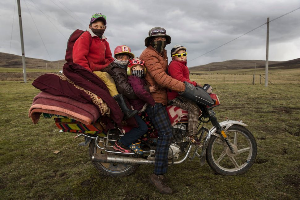 A Tibetan nomad family crowds onto a motorcycle at a camp for cordycep pickers near Sershul on May 21, 2016.