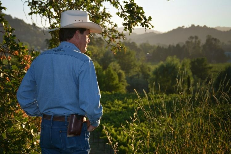 Tim Thornhill overseeing the vineyards of Mendocino Wine Company
