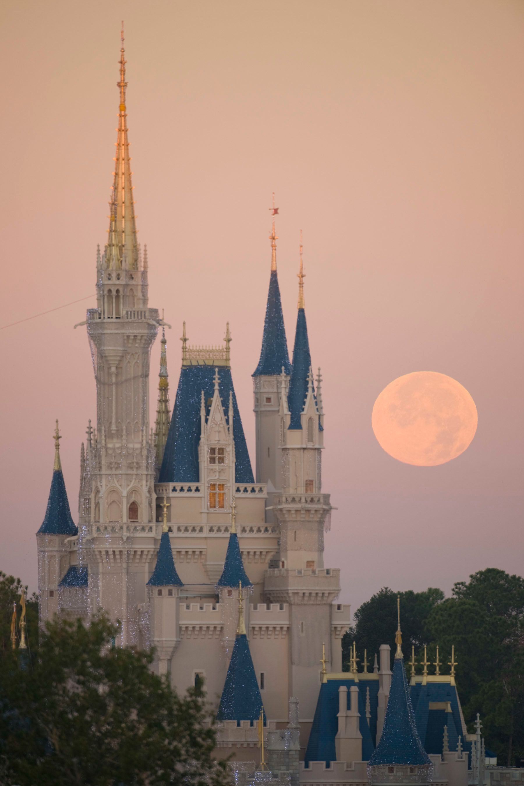 LAKE BUENA VISTA, FL - DECEMBER 21: In this handout photo provided by Disney, a full moon is seen over Cinderella Castle at Disney World on December 21, 2010 in Lake Buena Vista, Florida. (Photo by David Roark/Disney via Getty Images)