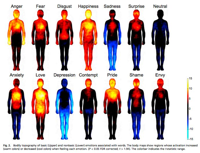 This is where we physically feel emotions in the body, according to researchers.