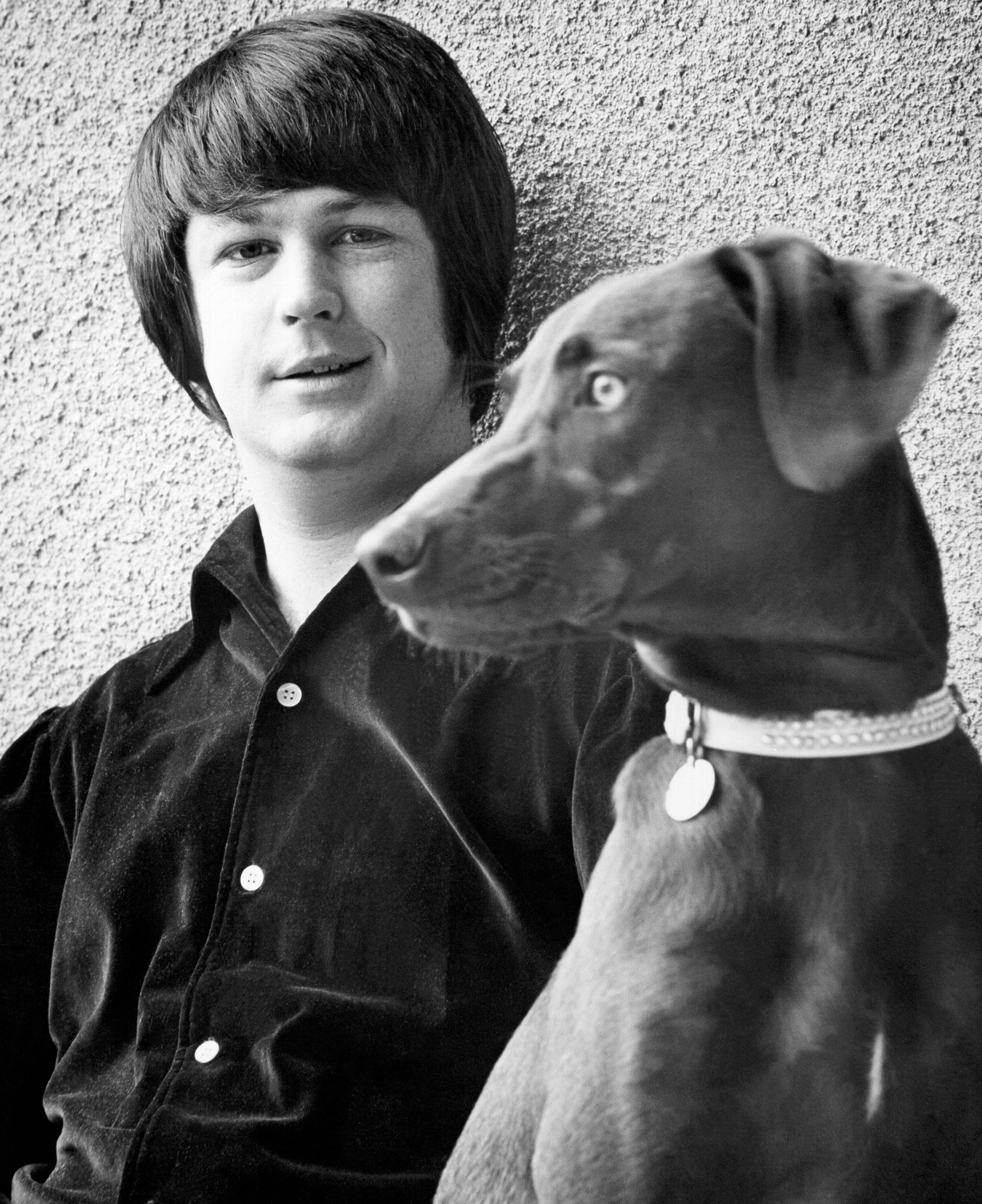 LOS ANGELES - CIRCA 1965: Band leader Brian Wilson of the rock and roll band 'The Beach Boys' poses for a portrait with his dog in circa 1965 in Los Angeles, California. (Photo by Michael Ochs Archives/Getty Images)