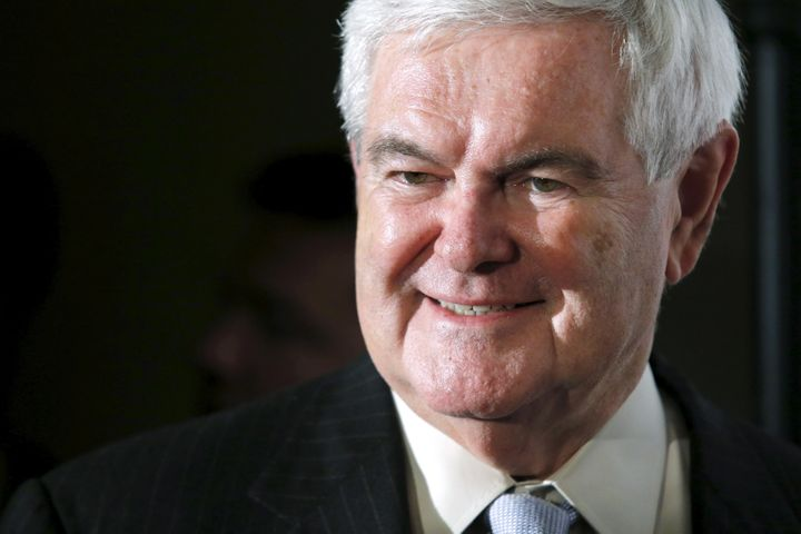 Former House Speaker Newt Gingrich says the U.S. ought to investigate terrorists like it did Nazi sympathizers.