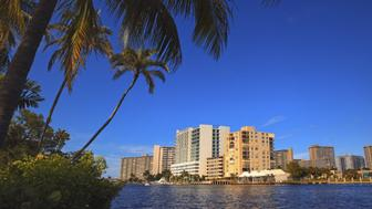 pompano beach canal, buildings and plam trees - florida