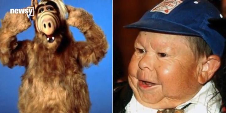 Alf and actor who played him, Michu Mescaros.