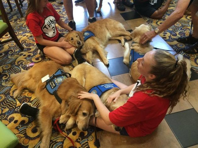 Girls snuggle with a few comfort dogs in