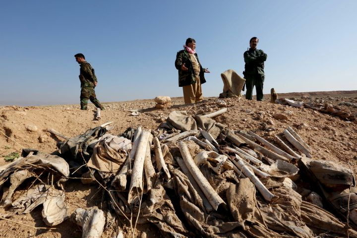 Several mass graves have been uncovered. These bones, suspected to belong to members of Iraq's Yazidi community, are seen in