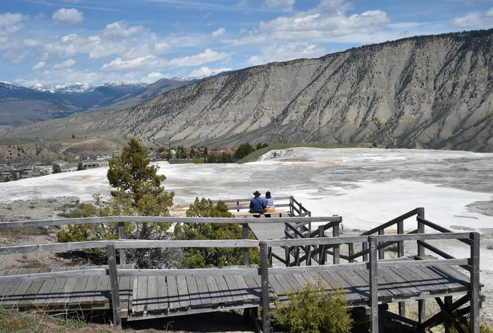 A tourist was fined $1,000 after Yellowstone National Park officials say he walked off a boardwalk around Mammoth Hot Springs