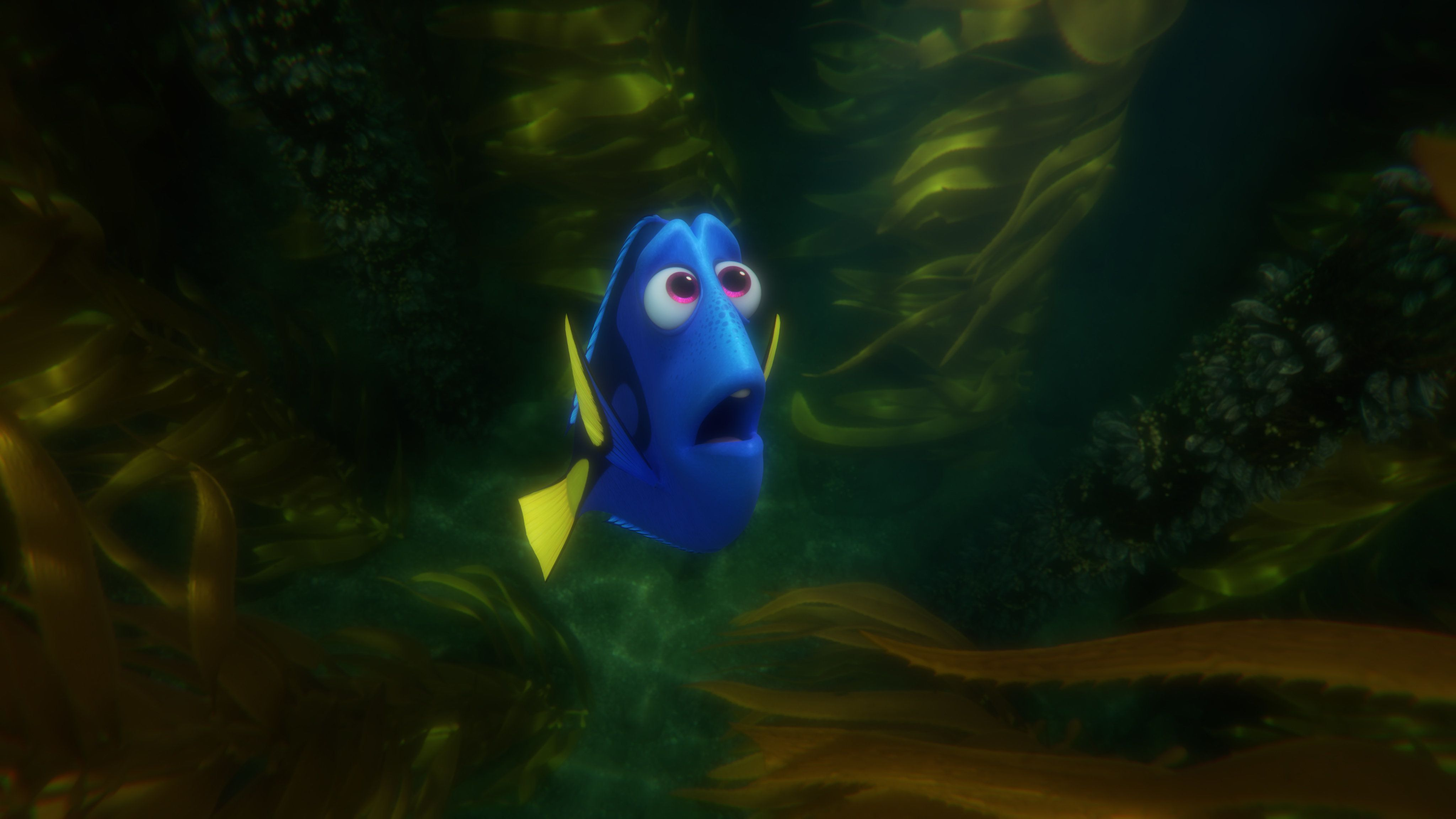 """LOST AND FOUND — In """"Finding Dory,"""" everyone's favorite forgetful blue tang Dory finds herself lost in the kelp forest while searching for answers about her past. Directed by Andrew Stanton (""""Finding Nemo,"""" """"WALL•E"""") and produced by Lindsey Collins (co-producer """"WALL•E""""), """"Finding Dory"""" swims into theaters June 17, 2016. ©2016 Disney•Pixar. All Rights Reserved."""