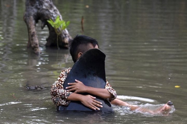A child hugs the fin of a dead stranded whale.