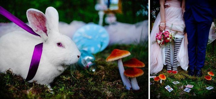 Bobo the bunny made a cameo in the couple's shoot.