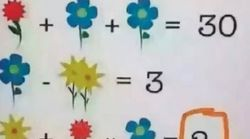 This Flower Maths Puzzle For Kids Is Stumping