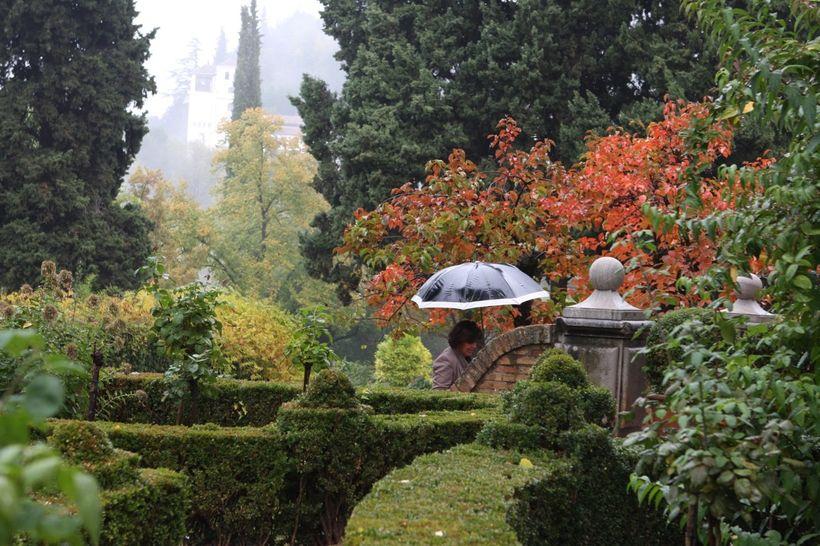 Alhambra's Generalife gardens