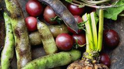 Obscure Vegetables You Should Be