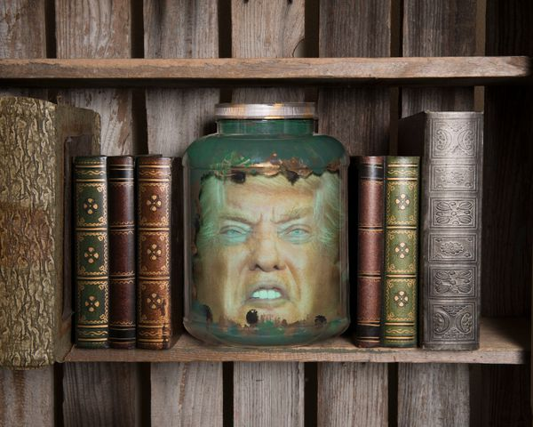 Some people would like Trump's head on a silver platter. Would you settle for a jar? This decorative jar makes it look like y