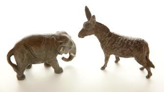 Miniature donkey confronts elephant