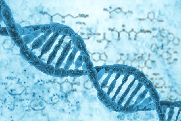 Is There Life After Death? Study Finds Evidence Of Hidden Genes Coming To