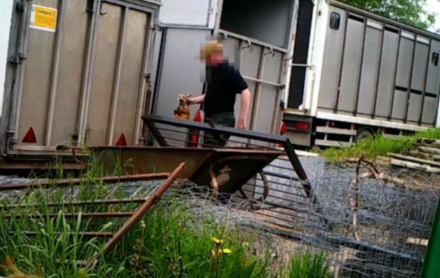 The footage was filmed by the Hunt Investigation