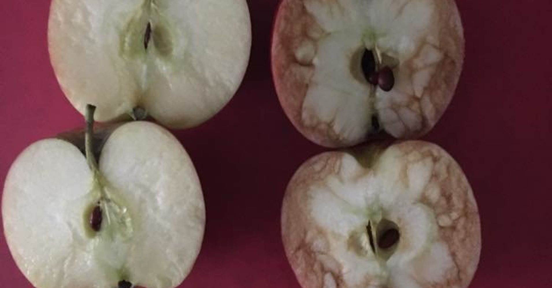 Teacher Uses Bruised Apple To Show Crushing Effects Of
