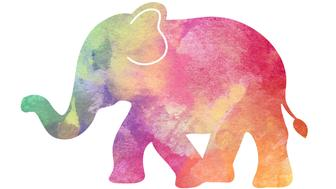 A baby elephant in rainbow watercolor