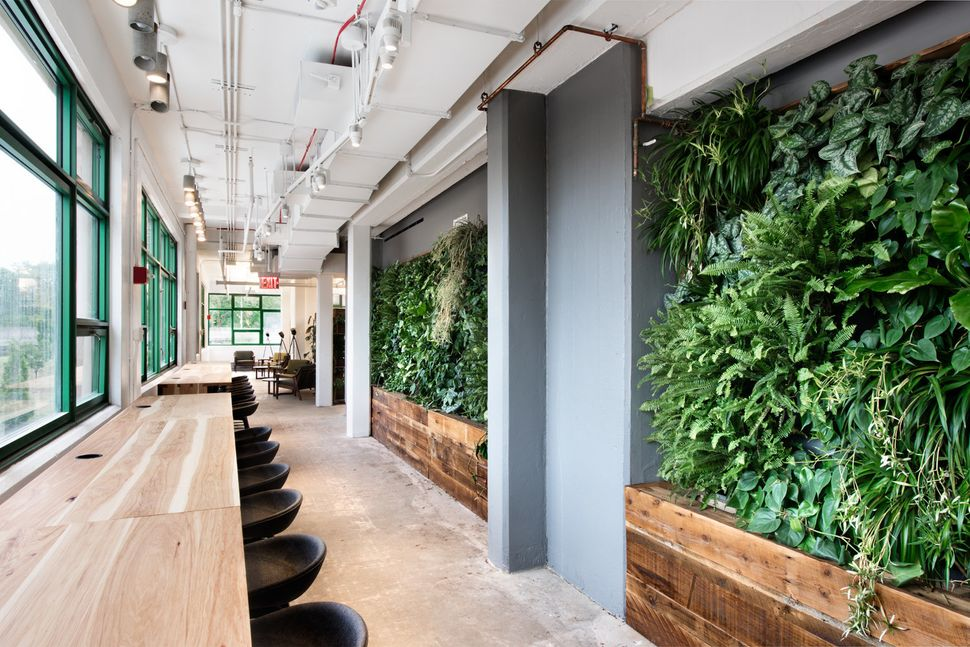 Etsy is helping redefine what green buildings look like - Building a living wall ...