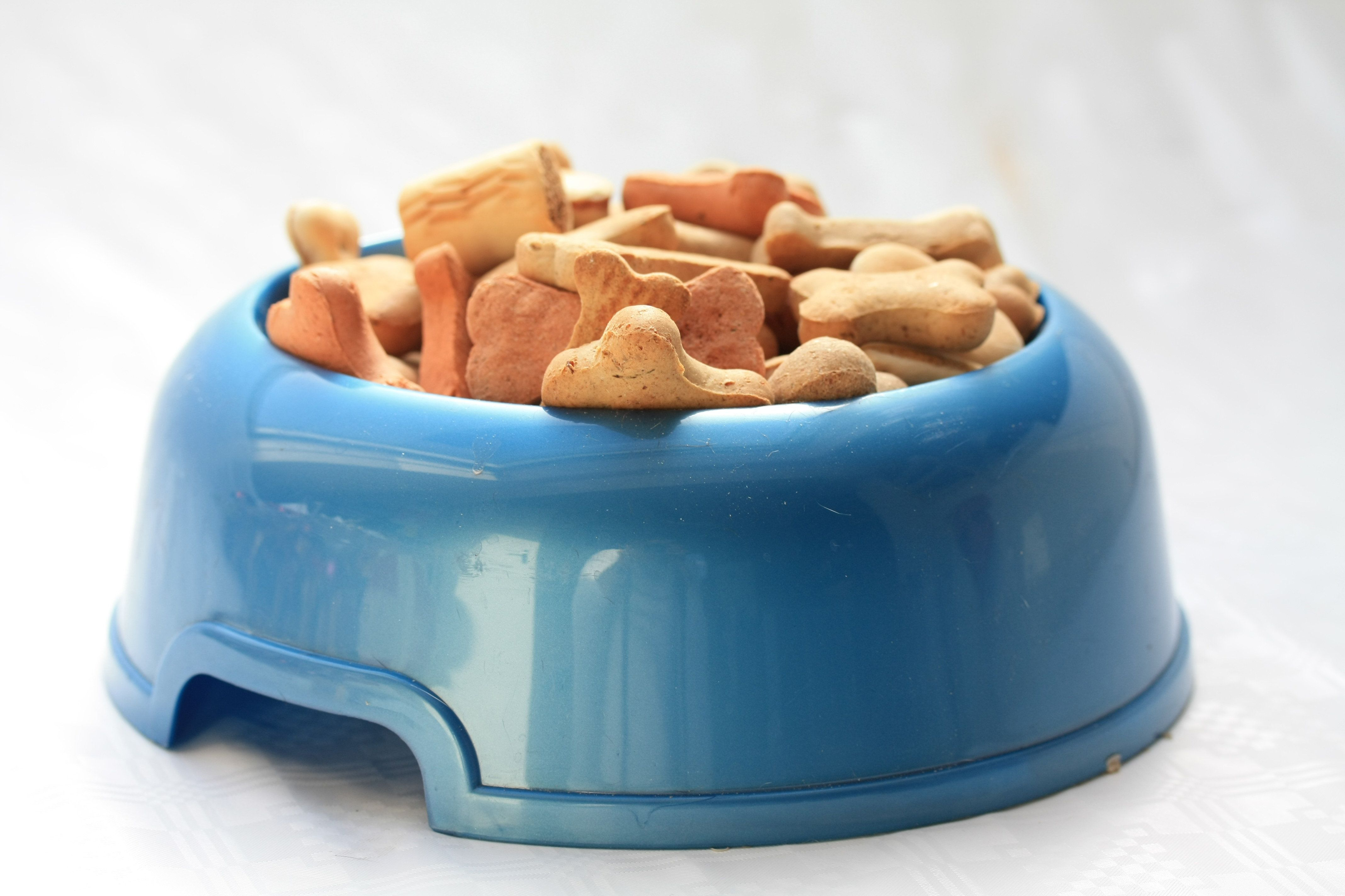 Blue bowl with dog cookies in different colors, shapes and maybe tastes too...