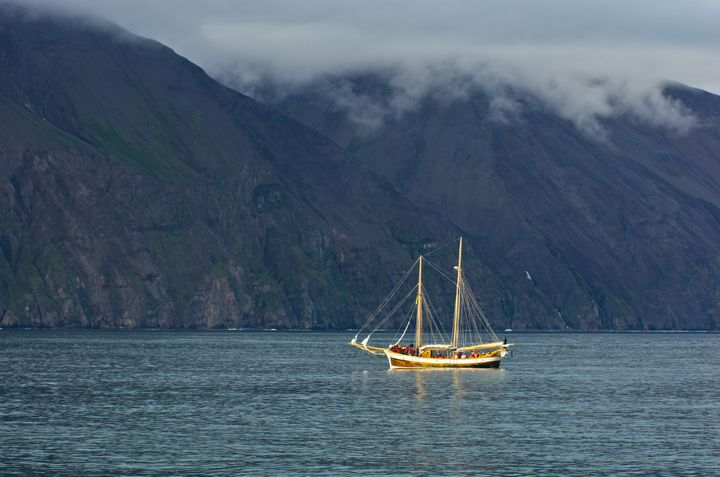 North Sailing is offering England's failed soccer team free whale watching tours in north Iceland's Husavik bay, pictured.