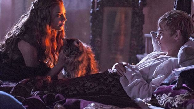 King Tommen Finally Reveals Why We Never Saw Ser Pounce
