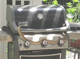 This Grill Belongs To A Snake Now