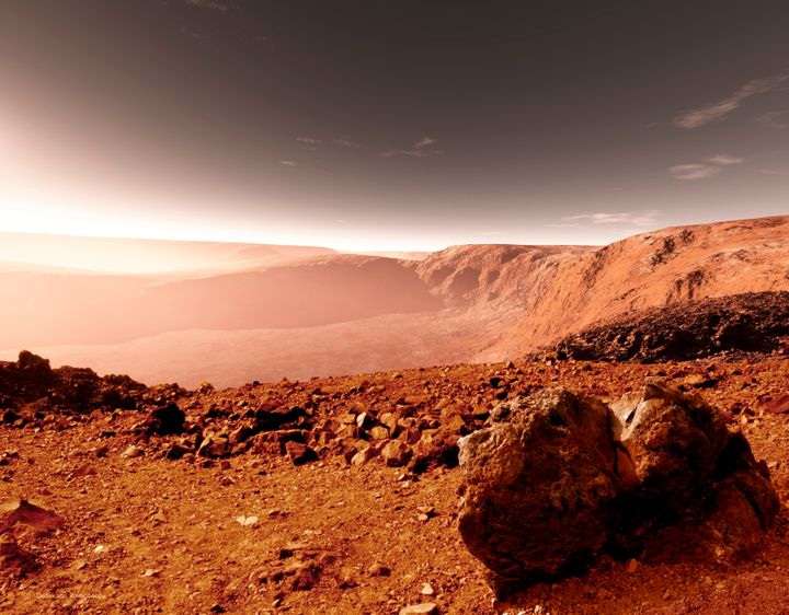 The surface of Mars, i.e. your new future garden.