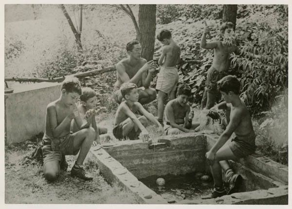 Boys examining nature at a country camp, circa 1950.