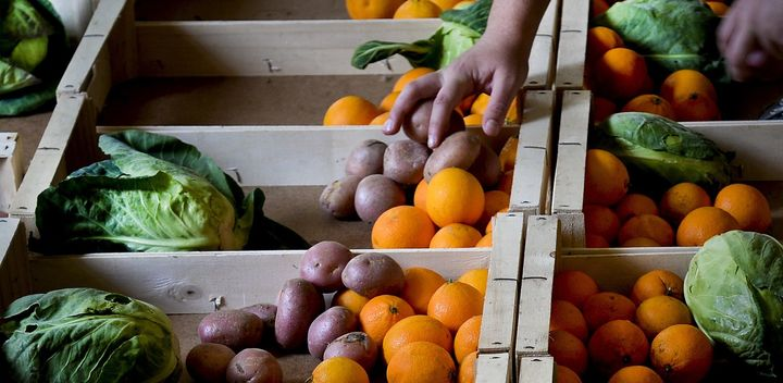 "A volunteer fills up boxes with fruit and vegetables at the ""Fruta Feia"" (Ugly Fruit) co-op in Lisbon on March 17, 2014. The"