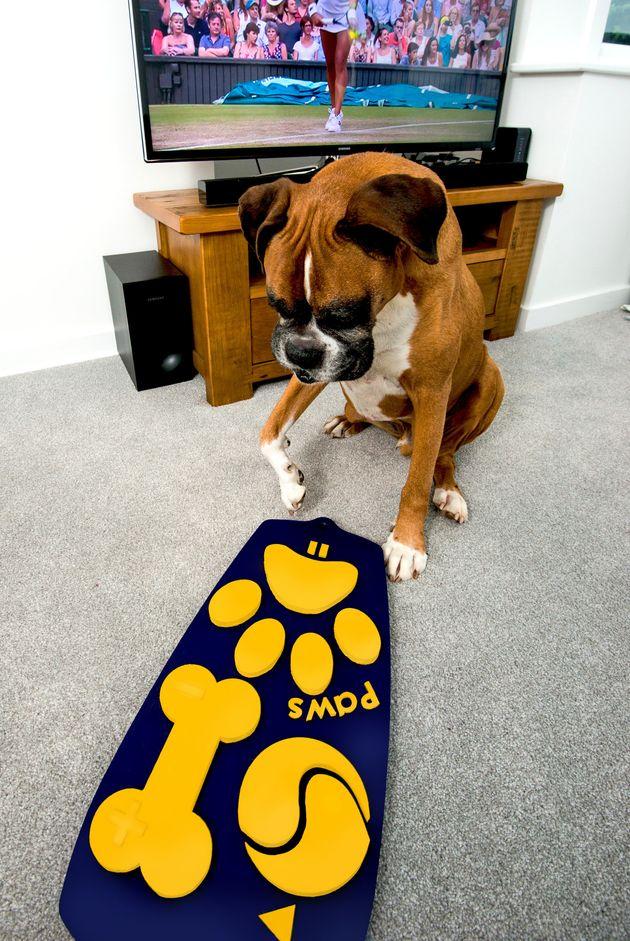Tv Afstandsbediening voor honden