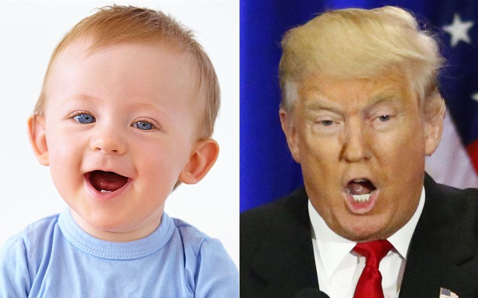 Would you rather see a cute baby in your news feed -- or an adult baby?