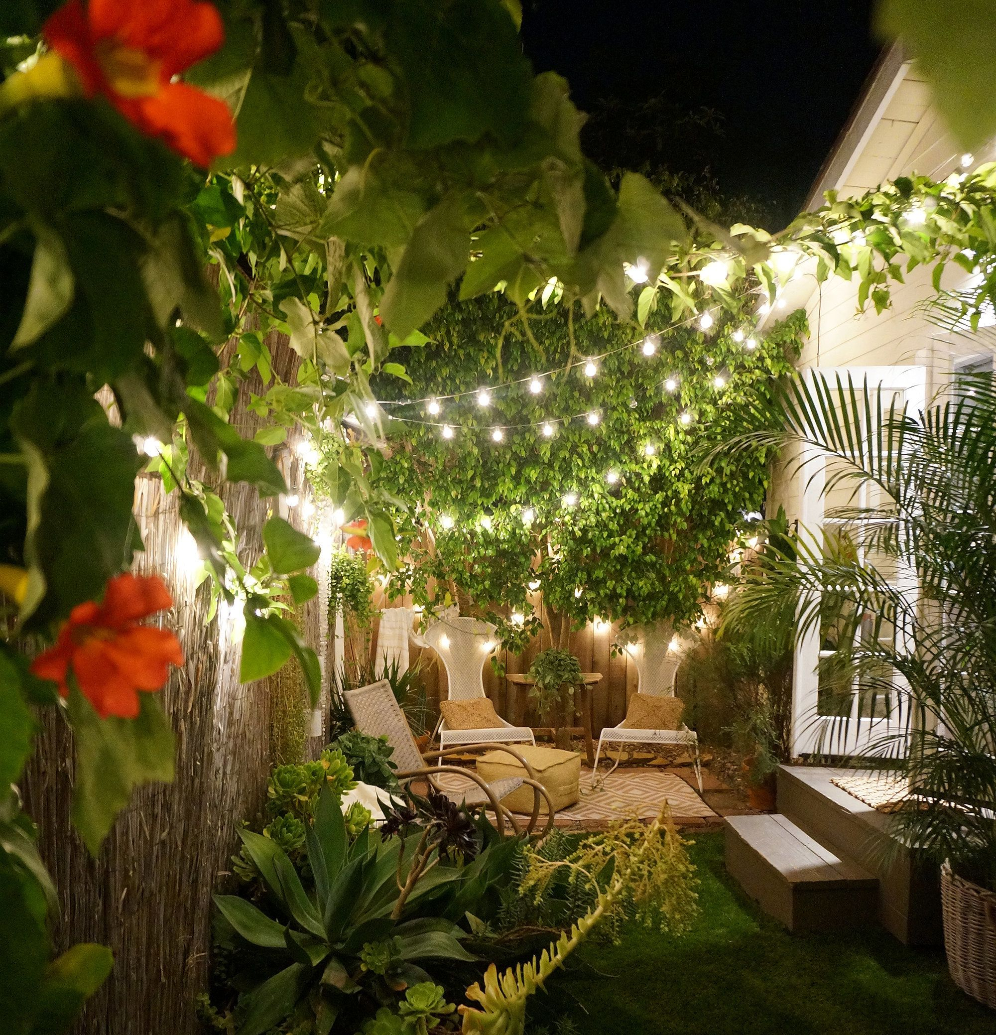 The couple's backyard illuminated by string lights on the night of the wedding.
