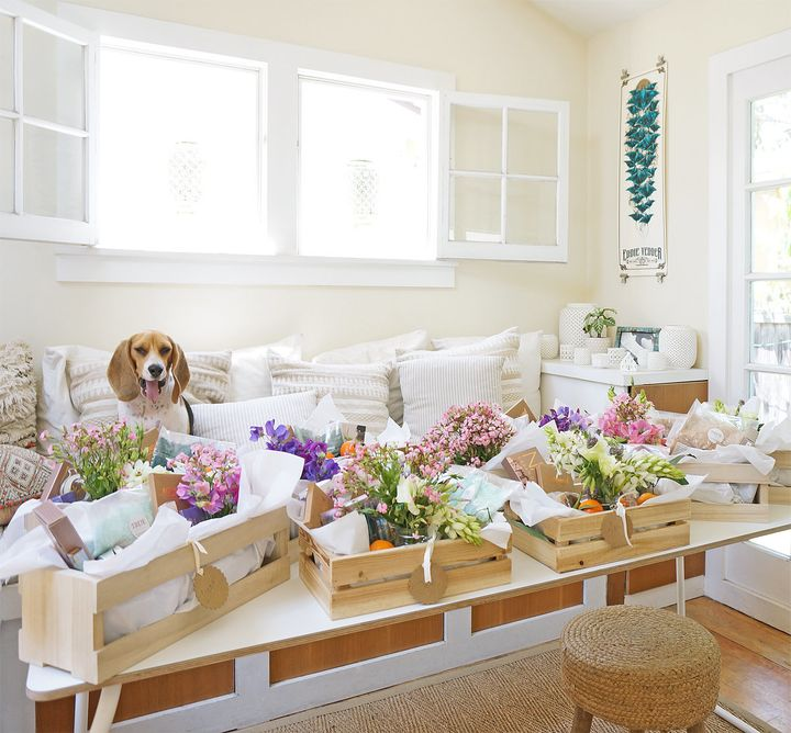 Sophee the beagle pictured with gift boxes for the bride's besties.