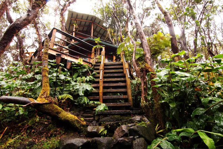 This treehouse runs for around $275 a night.