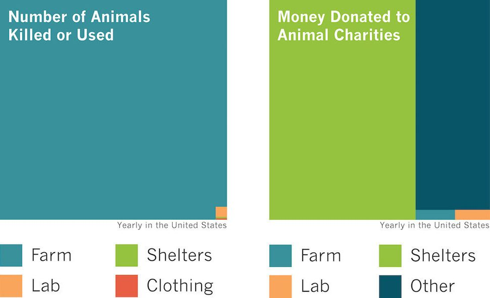 Sources: Charity Navigator; GuideStar; ASPCA, Shelter Intake and Surrender (2015); U.S. Department of Agriculture, Animal and