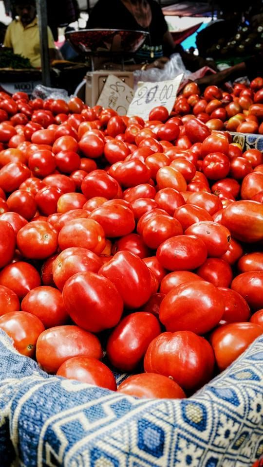Fresh Tomatoes at Market Day in Mauritius