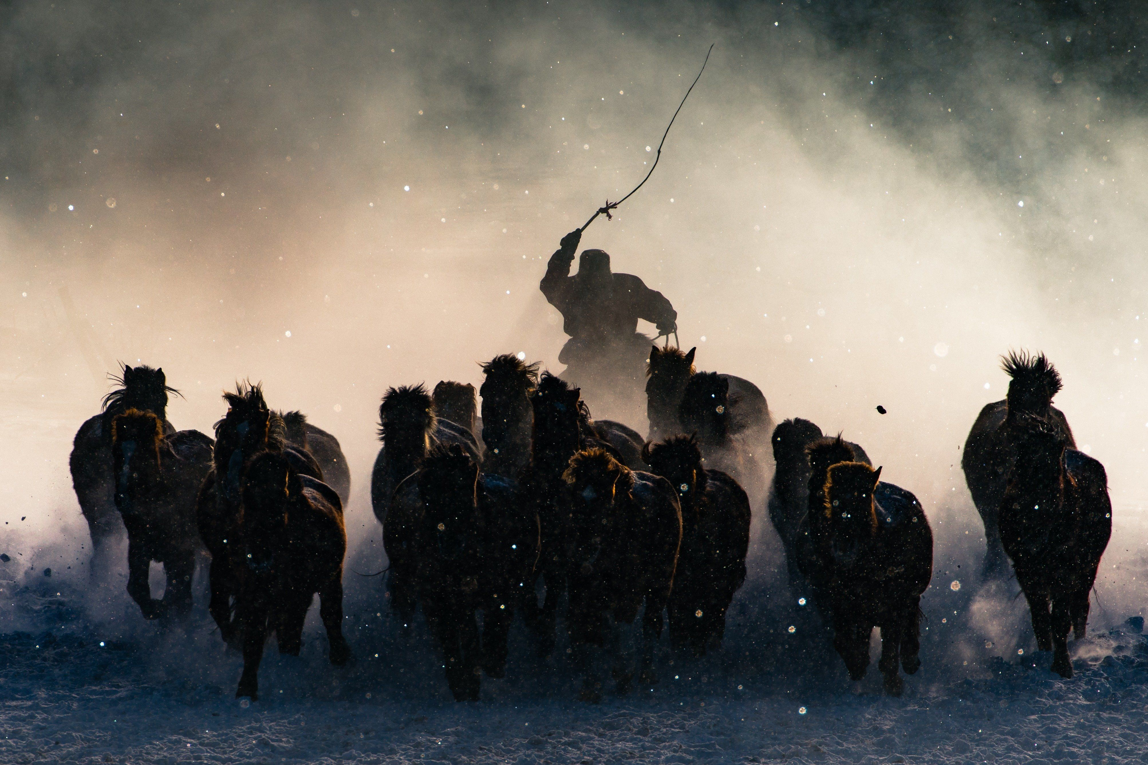 """<strong>Winter Horseman.</strong> Photo and caption by Anthony Lau/<a href=""""http://travel.nationalgeographic.com/photographer-of-the-year-2016/"""" target=""""_blank"""">National Geographic Travel Photographer of the Year Contest.</a><i>""""</i>The Winter in Inner Mongolia is very unforgiving. At a freezing temperature of minus twenty and lower with constant breeze of snow from all direction, it was pretty hard to convince myself to get out of the car and take photos. Not until I saw Inner Mongolia horsemen showing off their skills in commanding the steed from a distance, I quickly grab my telephoto lens and capture the moment when one of the horseman charged out from morning mist."""""""