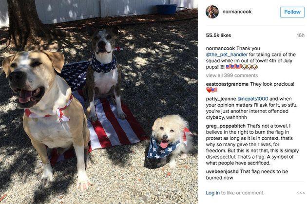 Kaley Cuoco s'excuse pour la photo de ses chiens assis sur le drapeau