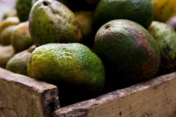 "<a href=""https://www.thefoodstand.com/posts/14132-lauren-all-hail-the-frozen-avocado-freeze-em-to-keep-em-bake-em"" target=""_b"