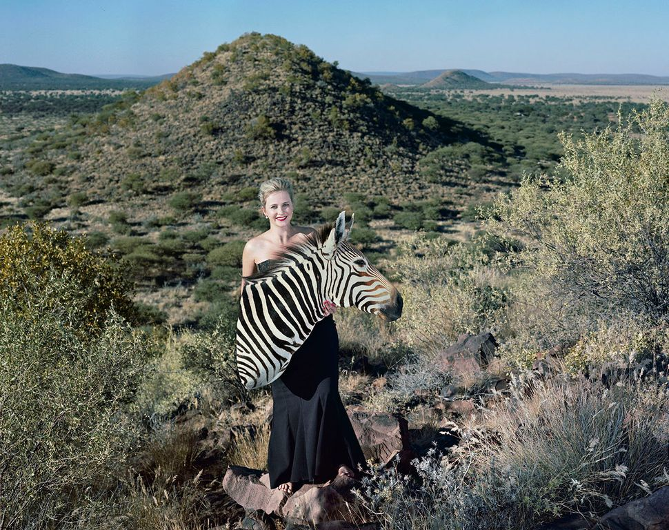 Caren and shoulder-mounted mountain's zebra.