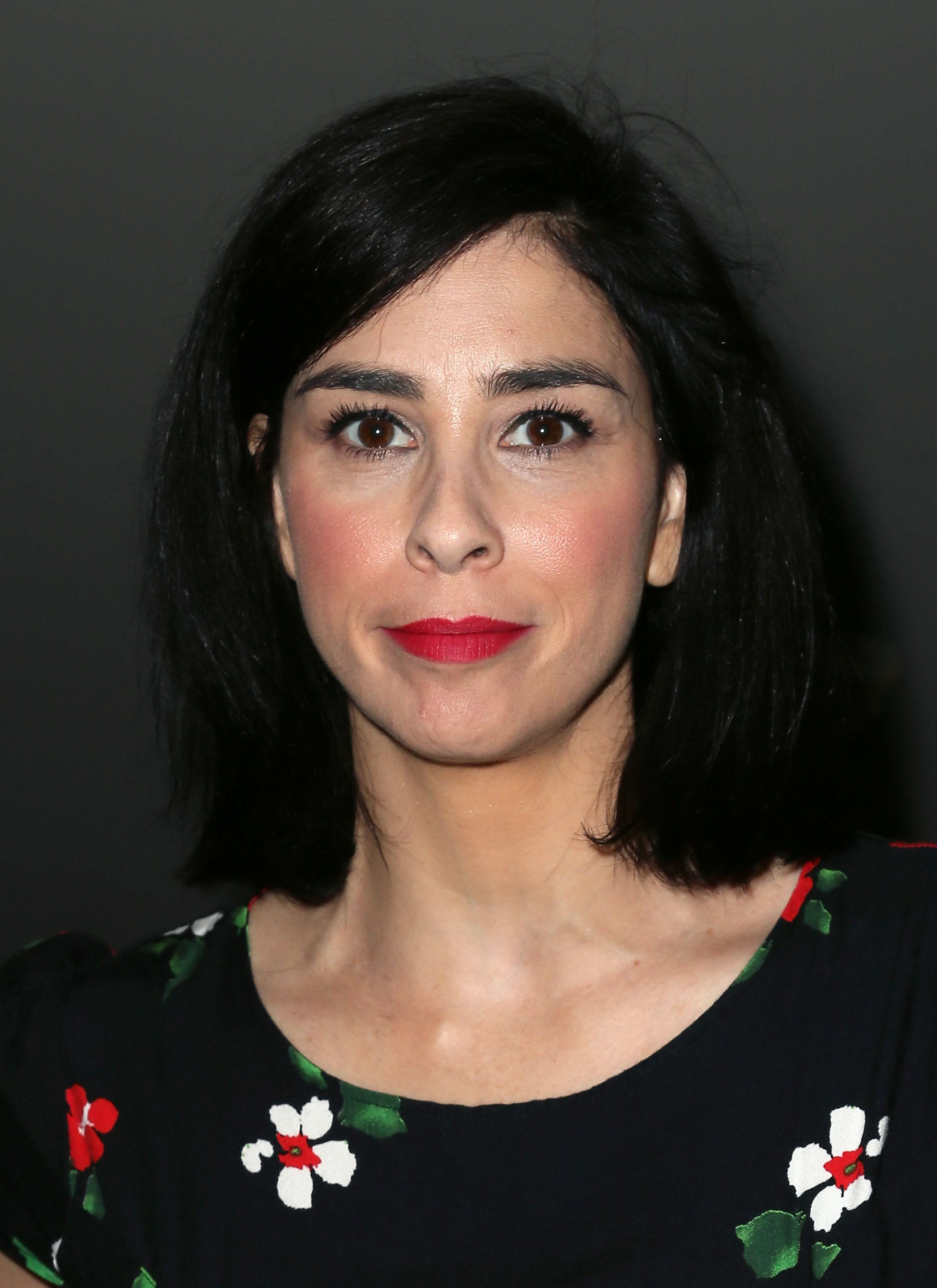 """""""I am insanely lucky to be alive,"""" Sarah Silverman wrote."""