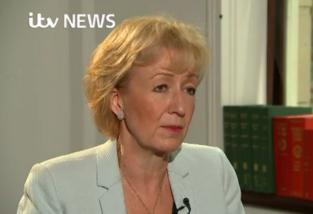 Tory leadership hopeful Andrea Leadsom said she wants tohold a vote to repeal the fox hunting