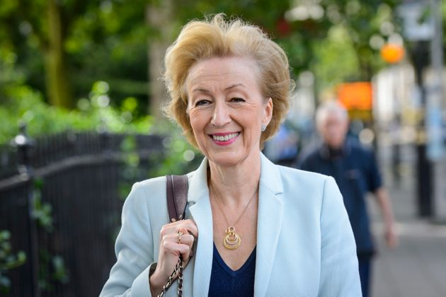 Leadsom is running against Theresa May to be Conservative